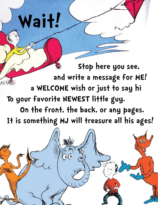 Dr. Seuss Baby Shower Guestbook