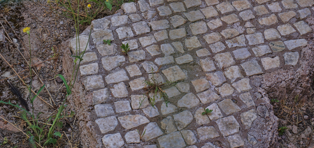 Old tiles found in the Palatine Hill